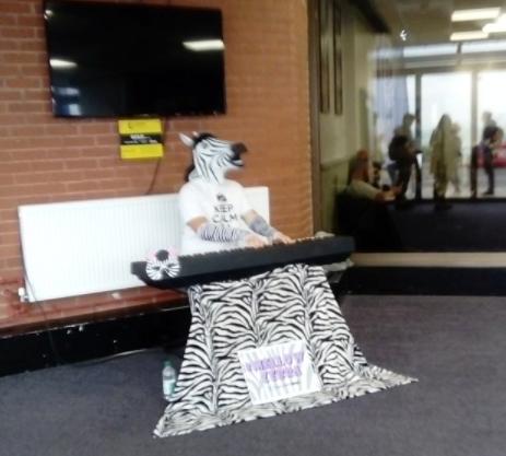 Brighton Mellow Zebra | Claromentis