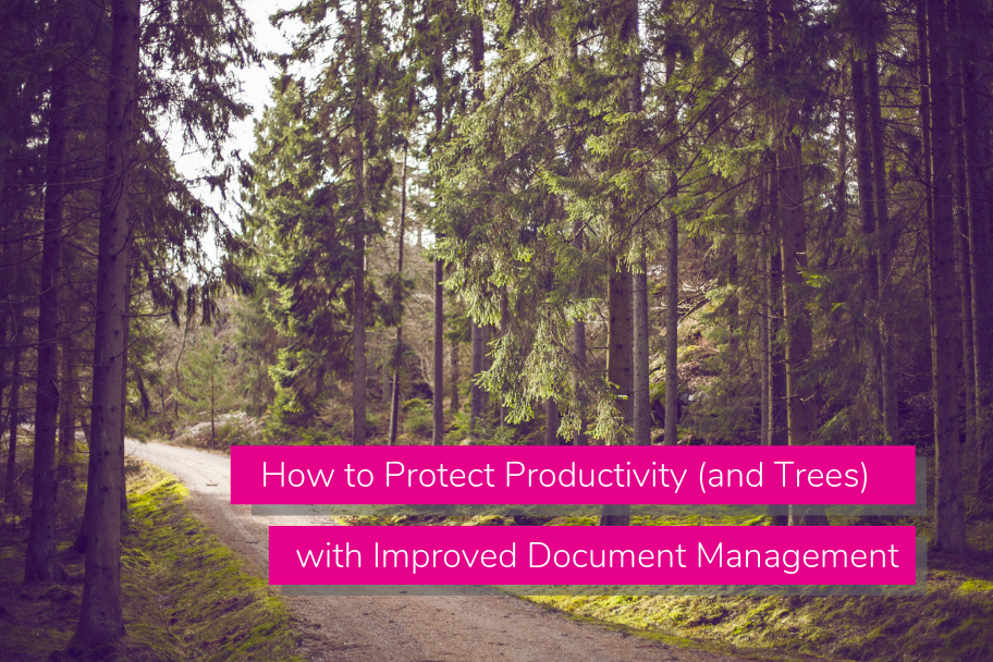 How to Protect Productivity (and Trees) with Improved Document Management | Claromentis