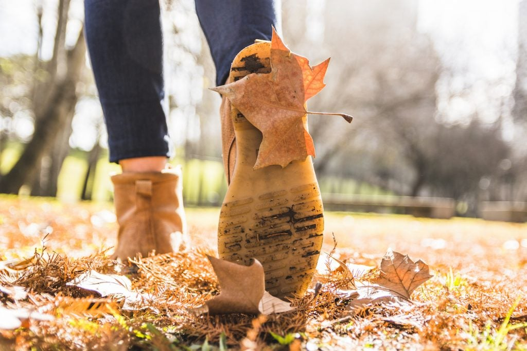 Why Autumn is the Best Time to Boost Your Business Culture | Claromentis